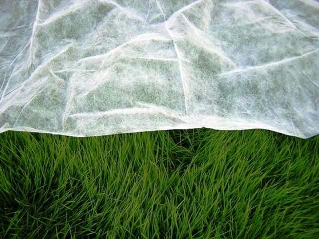 agrofolia üzletág fátyol fólia termékkép 2