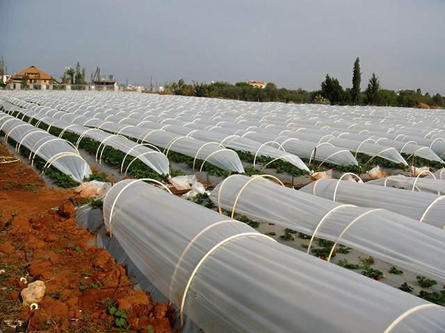 agrofolia üzletág kisalagút fólia termékkép 3