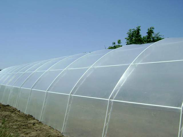 agrofolia üzletág natúr fólia termékkép 3