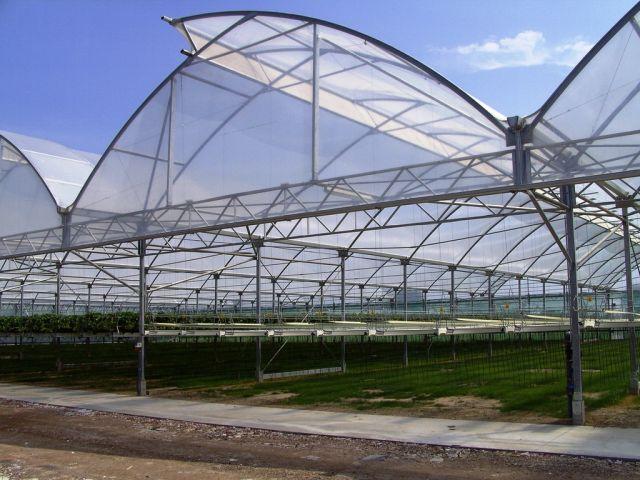 agrofolia üzletág satorfolia palastfolia termékkép 1