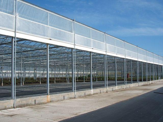 agrofolia üzletág satorfolia palastfolia termékkép 3